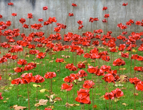 Faith Groups come together for Remembrance Sunday