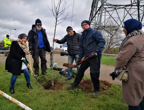 Tree Planting in Enfield, London
